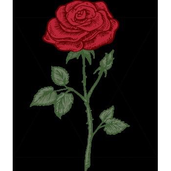 Motyw Walentynki 23